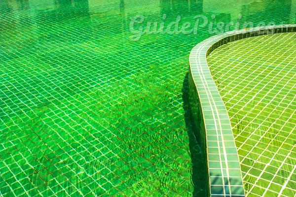 Nos astuces contre une piscine qui vire au vert for Nettoyage piscine verte