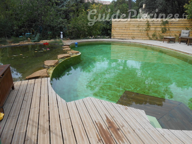 Transformation de piscine traditionelle en piscine naturelle